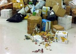 Depremzedelere toplanan yardımlar köpeklere yem oldu