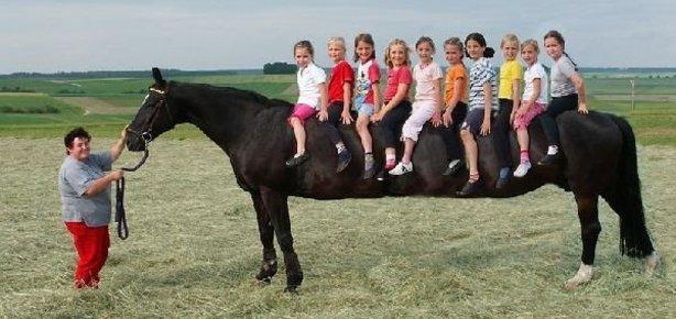 Bu at� görenler gözlerine inanam�yor