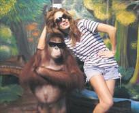 Maymuna bak