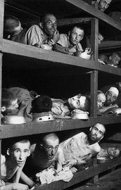 Yahudi soykırımının bedelini biz ödüyoruz