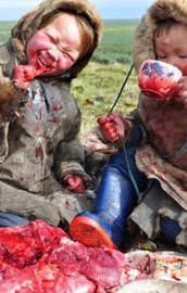 Kanlı kanlı yediler!