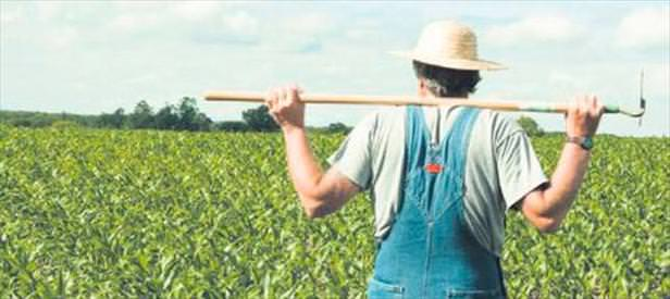 Çiftçiye de halde yer verilecek