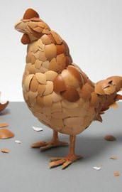 Tavuk ve yumurta tüketmek...