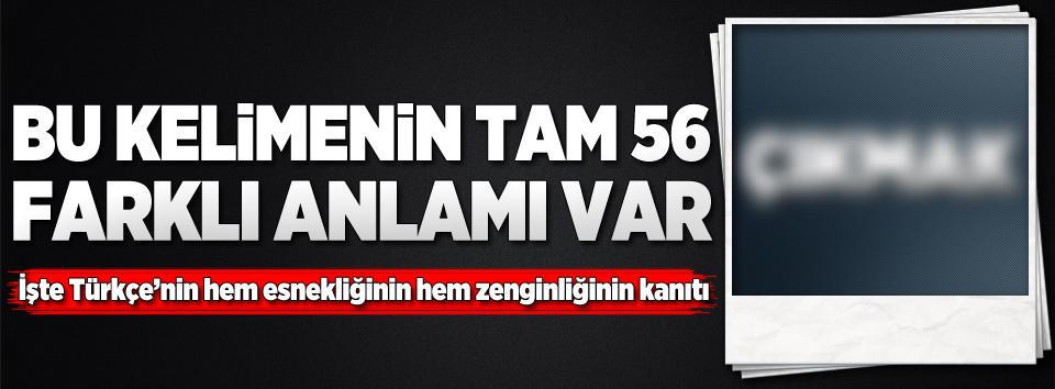 Bu Türkçe kelimenin tam 56 anlamı var!