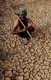 O ülkede aşırı sıcaklardan bin 400 kişi öldü