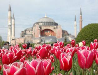 İstanbul Lale Festivaline hazırlanıyor!