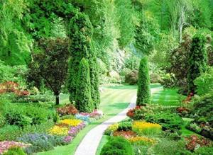 Cenneti anlatan ve m�jdeleyen ayetler