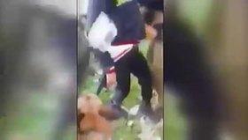 Filistinli çocuğa köpek işkencesi!