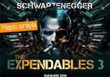Schwarzenegger, Terminator 5, King Conan ve Expendables 3 dedi