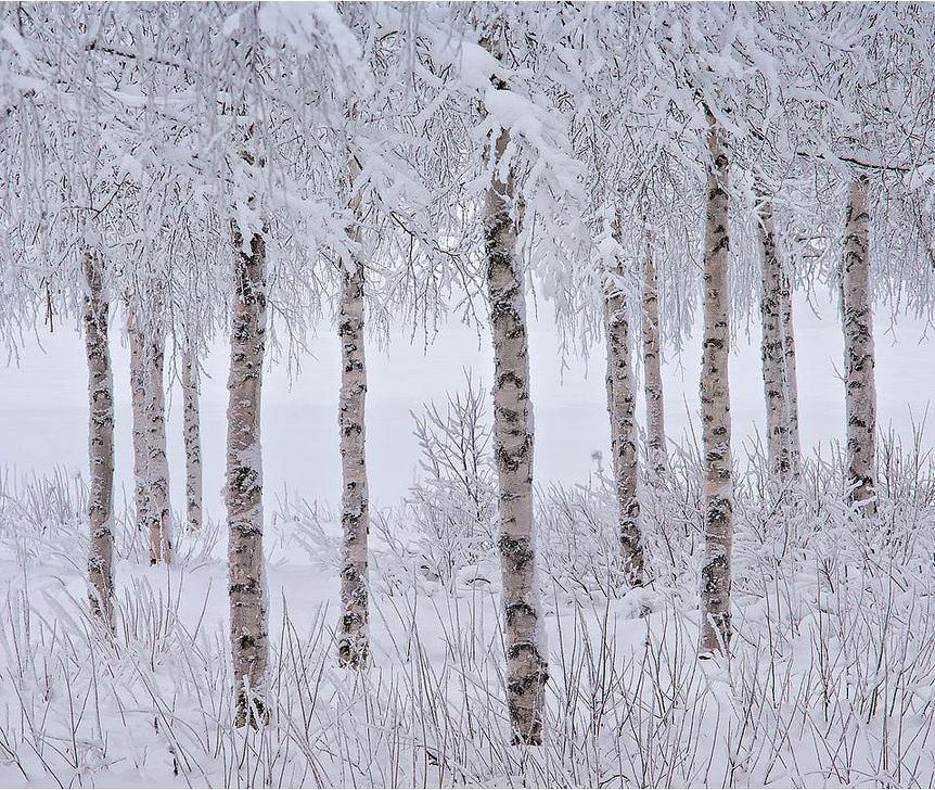 """Y�l�n Manzara Foto�rafç�s�"" yar��mas�ndan harika foto�raflar!"