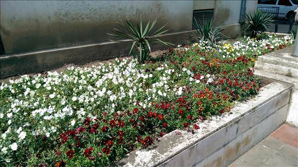 Galaxy S5, One M8, Xperia Z2, iPhone 5s ve LG G2 kamera �rnekleri