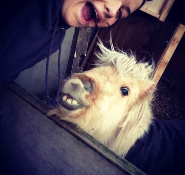 Hayvanl� selfie foto�raf d�nemi: #Felfies