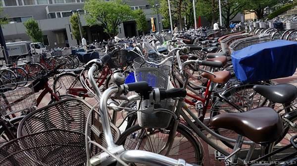 Japonya'daki devasa yeralt� bisiklet �ehriyle tan���n
