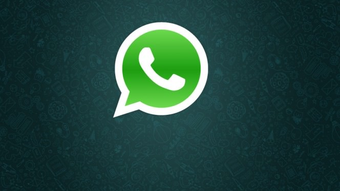 WhatsApp, 5 y�lda ne kadar b�y�d�?
