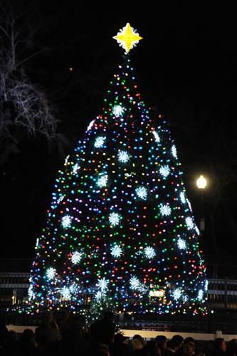 Başkan yılbaşı ağacını ışıklandırdı