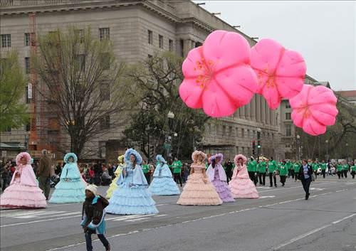 Washington'da Kiraz Çiçeği Festivali