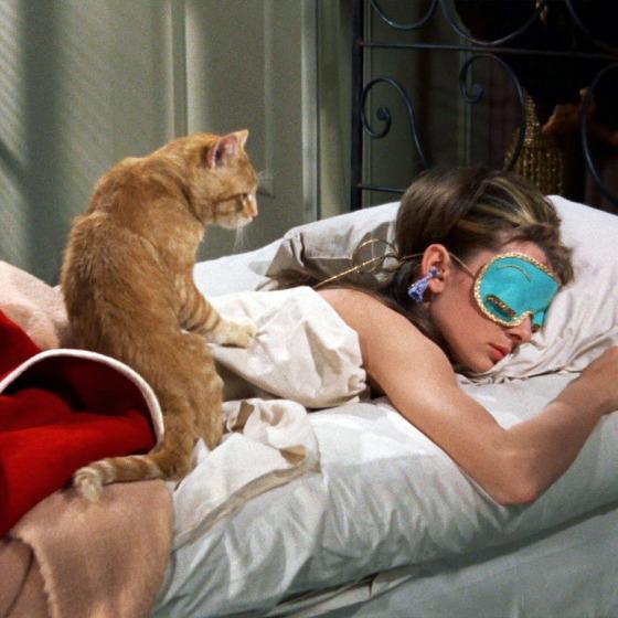 Uyku Rutininizi Düzene Oturtun