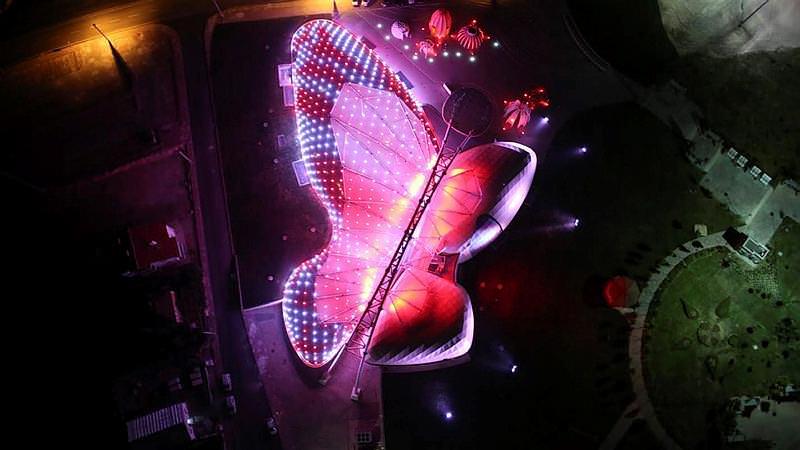 Türkiyenin dev kelebeği